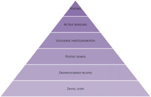 Vitaliteitspiramide